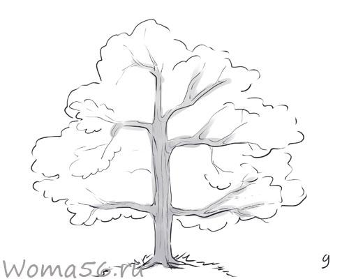 Как нарисовать дерево без листья