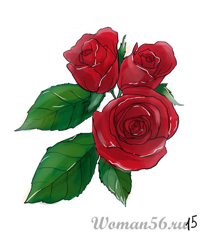 Комнатные цветы красного цвета 126