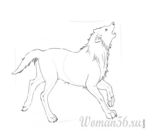 Как рисовать лапы у волка