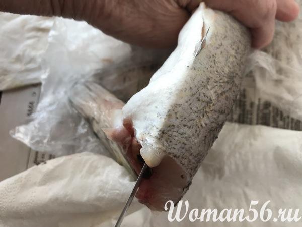 разрез брюшка щуки