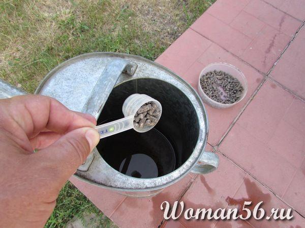 удобрения для гортензии метельчатой