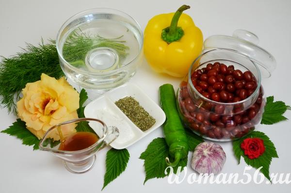 ингредиенты для облепихового соуса