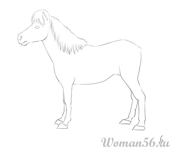 Как нарисовать пони настоящею
