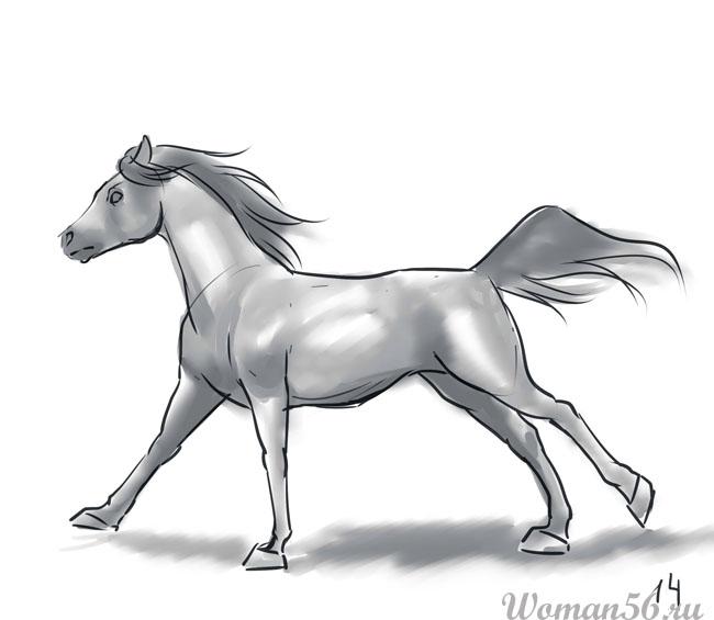 Как рисовать лошадь поэтапно