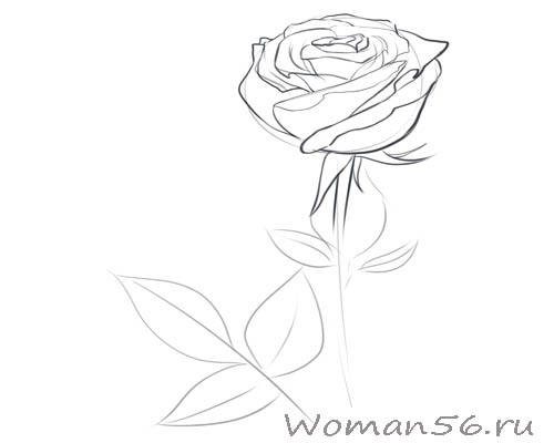 Тест рисовать цветы