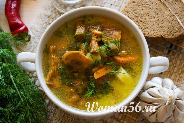 Как варить суп из лисичек