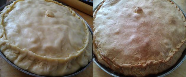 готовый пирог с гусем