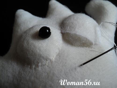 объем для глаза кота саймона