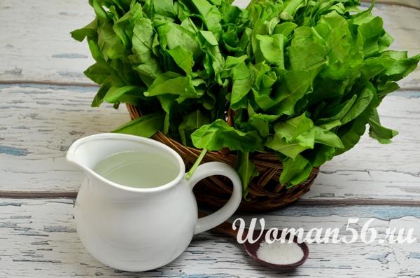 ингредиенты для заготовки щавеля на зиму