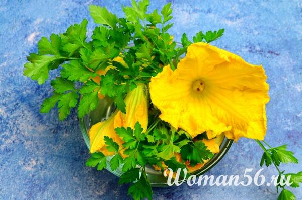 тыквенные цветы
